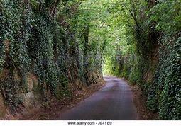 east coker lane